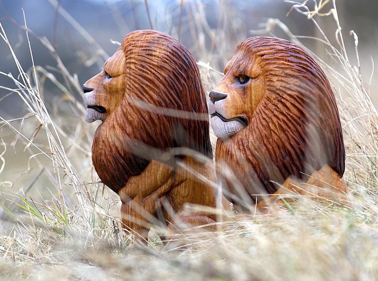 lev ze dřeva, dřevěný lev, sošky lvů, socha lva